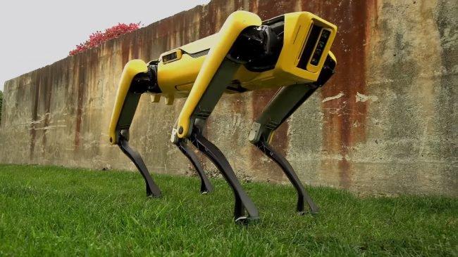 Фото - #видео дня | Boston Dynamics представила своего нового робота