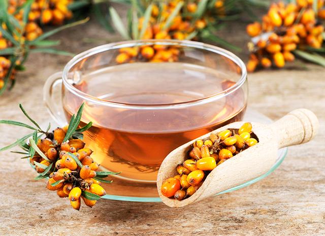 Фото - 3 рецепта согревающих напитков: чай с облепихой, черной смородиной и эвкалиптом