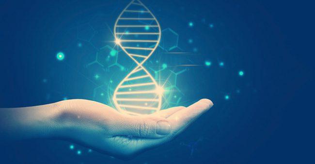 Фото - 10 невероятных трюков, которые ученые впервые провернули с ДНК
