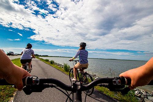 Фото - Аренда велосипедов