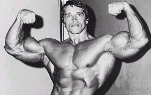 Фото - Набираем мышцы, а не жир
