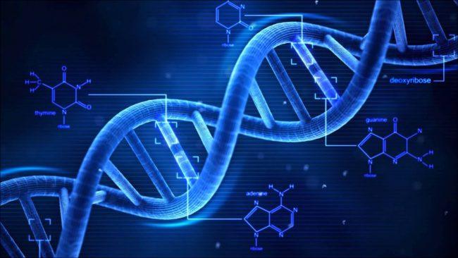 Фото - Microsoft записала в ДНК песню Deep Purple