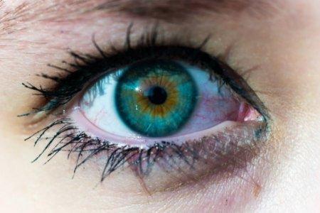 Фото - Американские учёные создали контактные линзы, темнеющие на солнце