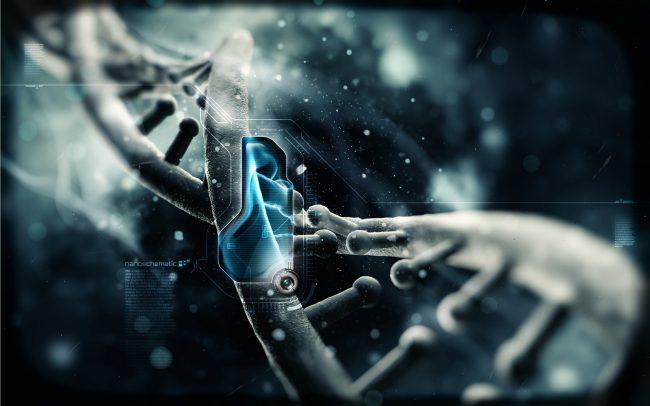 Фото - Ученые добавили две новые буквы в генетический код