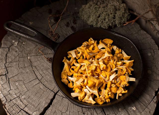 Фото - Три аппетитных рецепта с лисичками: салат, ролл и пирог