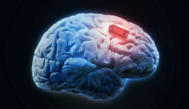 Фото - Импланты для улучшения памяти уже можно использовать. И они работают!