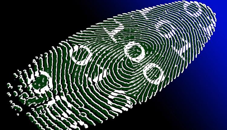 Фото - «Персона»: новая российская система биометрической идентификации»