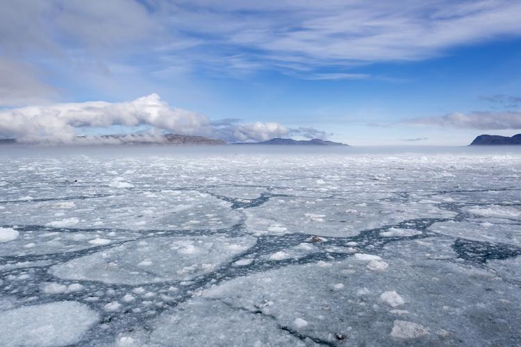 Фото - В Арктике запустят систему подводной навигации «Позиционер»»